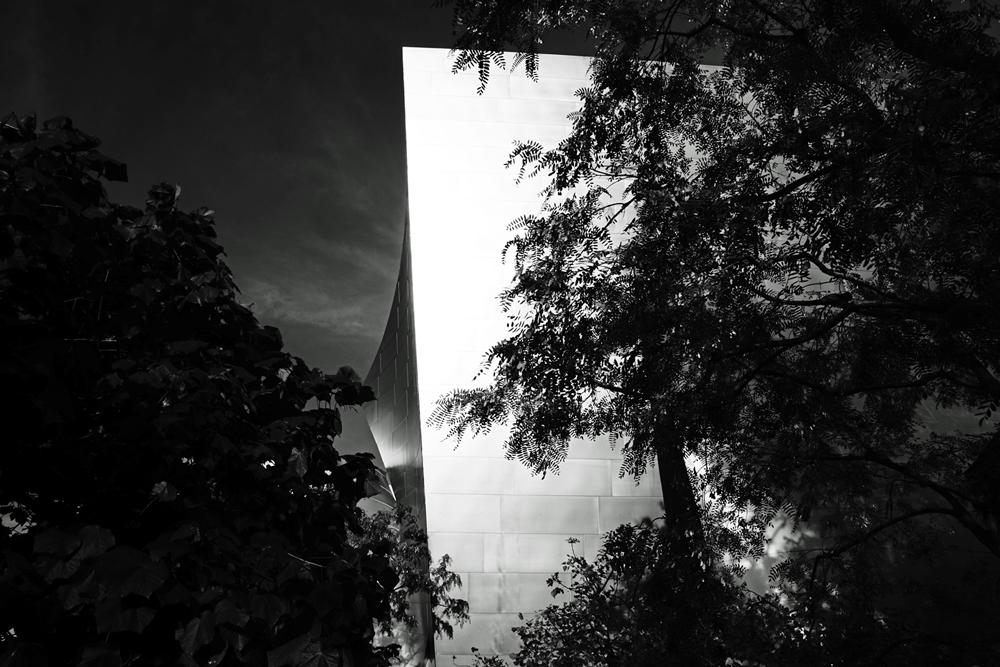High Contrast Image Of Walt Disney Hall LOs Angeles