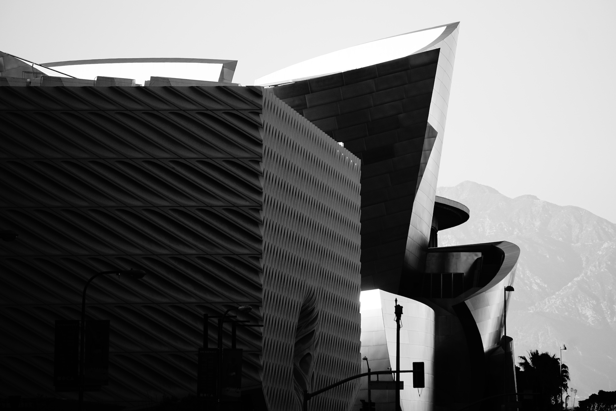High Contrast Silhouette of Frank Gehry Walt Disney Hall Los Angeles